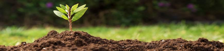Substráty, hnojivá a ochrana